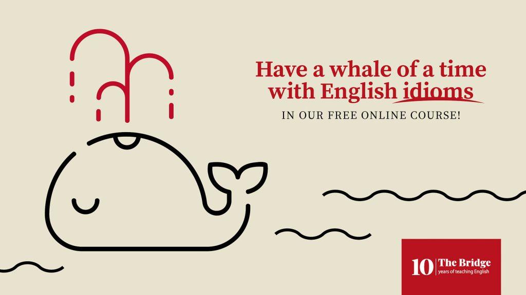 English idioms - anglické idiómy